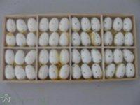Ei z.H 3 cm ass, 48Stk/Box