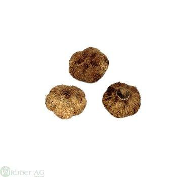 Mela-Zapfen 2-3 cm, 500g/Btl