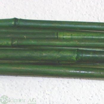 Bambus D6-12/L1500mm x16