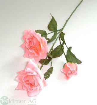 Rose 3 Blüten m.L 7/40 cm