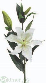 Lilie x2 69 cm