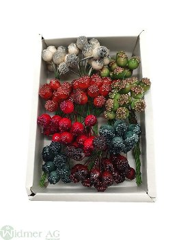 Früchte 1/9 cm, 144/Box