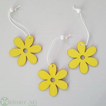 Blume zH. D6 cm