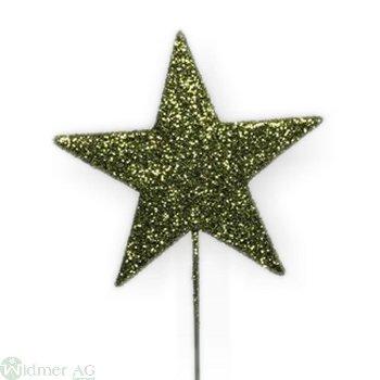 Stern auf Draht, 5.5 cm, 48/BX