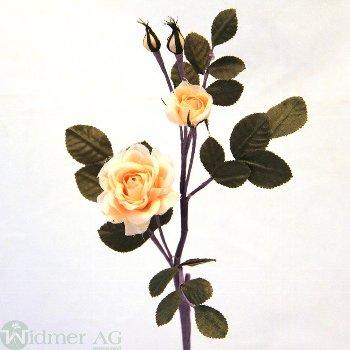 Rösli 2 Blüten m.L. 23 cm