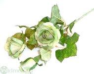 Rose x3 D6/75 cm