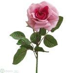 Rose 4/40 cm