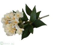 Frangipani x1 85 cm