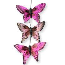 Vögel | Schmetterlinge | Käfer