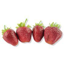 Früchte | Gemüse | Gewürze